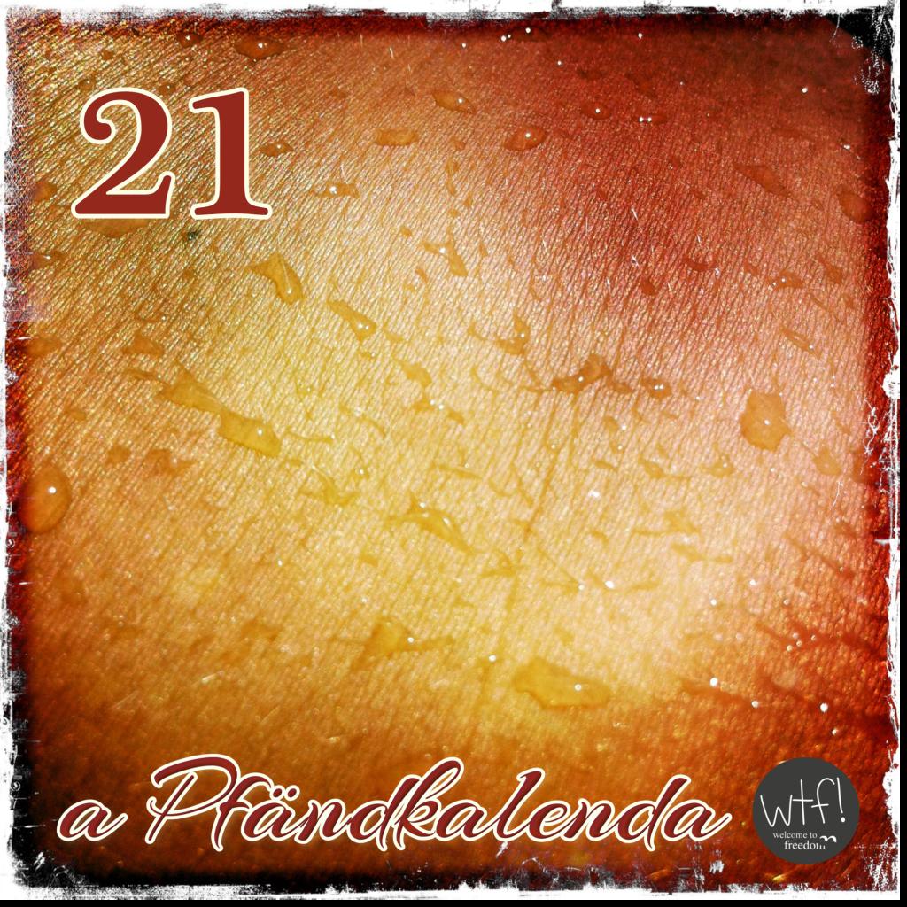 aPfändkalenda21