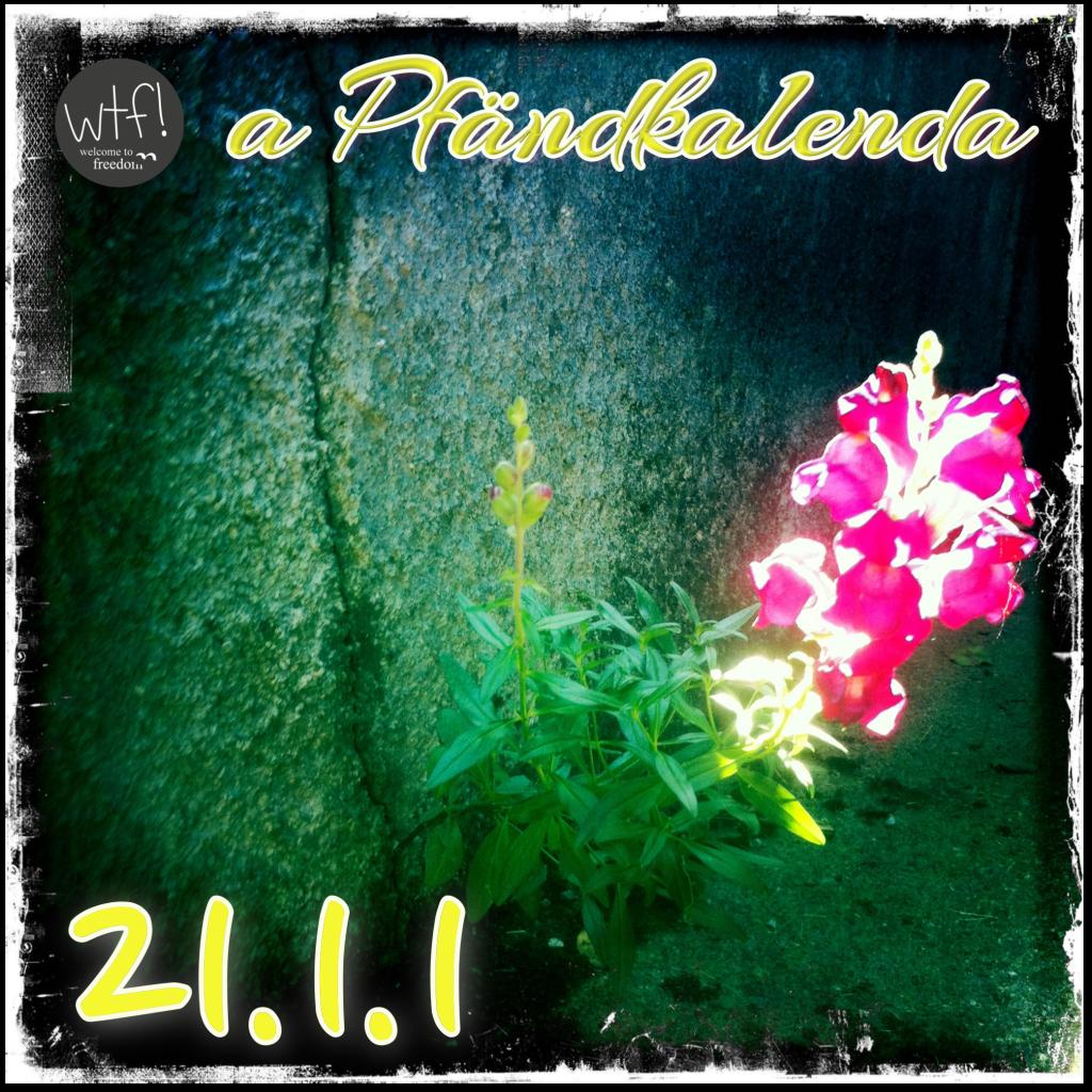 aPfändkalenda23